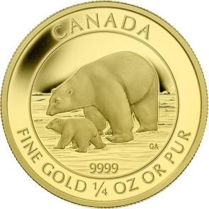1/4 oz Gold RCM Polar Bear and Cub Coin 2015