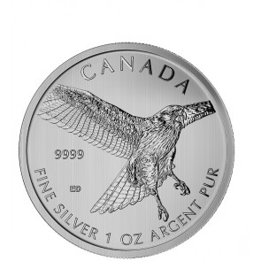 1 oz RCM Birds of Prey Series Red Tail Hawk coin 2015